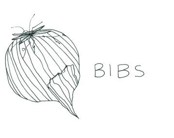 little roots bibs 1