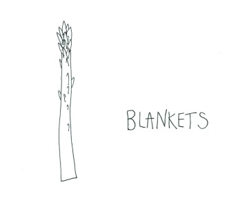little roots blankets 1